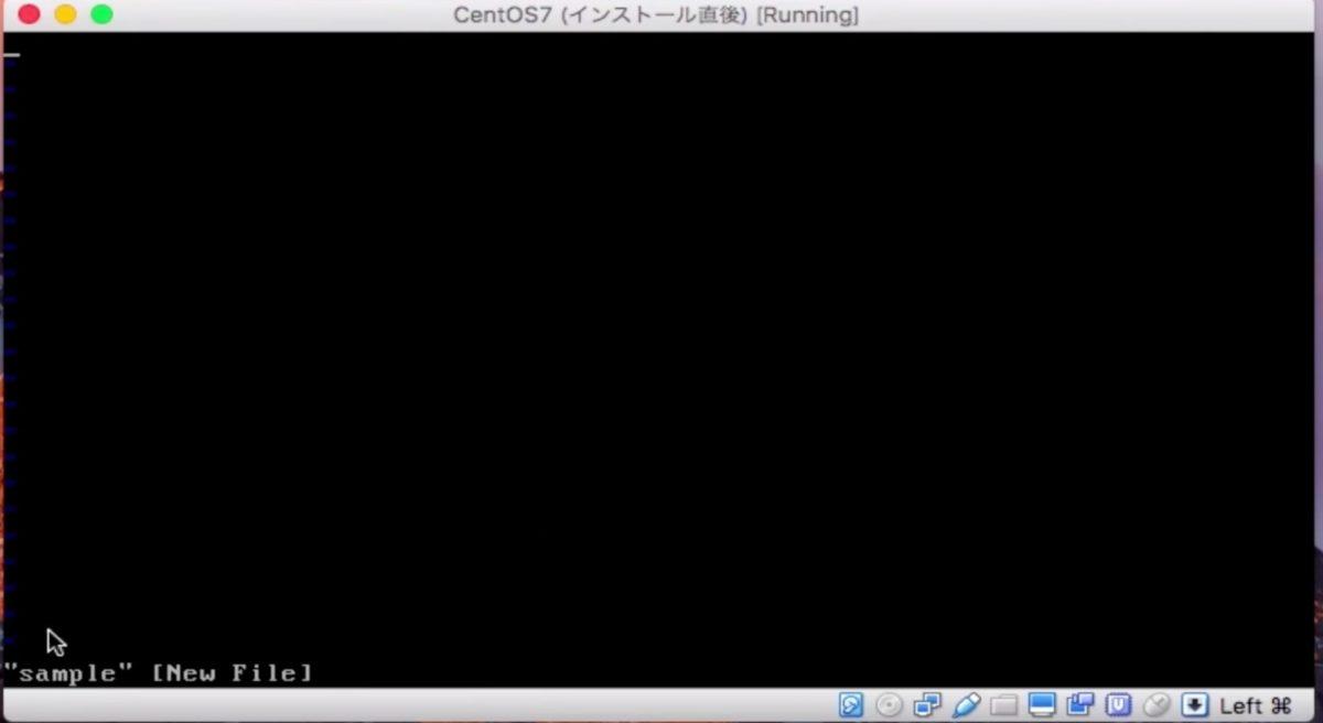 viで新規ファイルを開いた画面