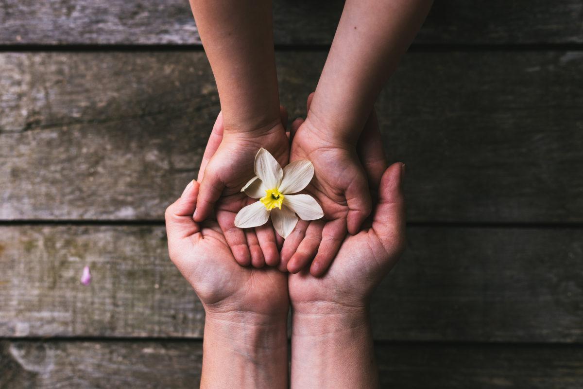 花を親から子へ